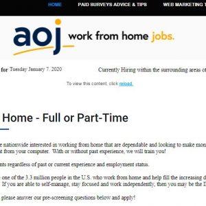 american Online jobs(aoj)-onlinemoneyseekers